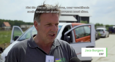 Stadslandbouw met strokenteelt in Almere Oosterwold?