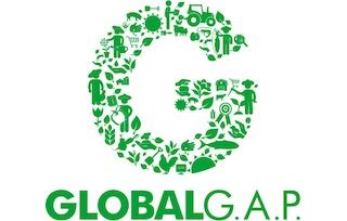 LogoGlobalGAP